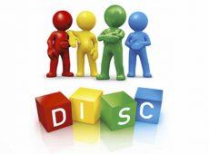 Diagnósticos DISC
